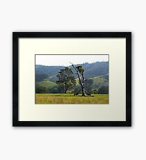 Riverwood Down Framed Print