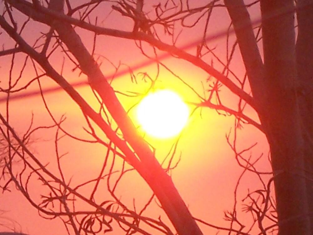 Yakanarra Sunset by Accused