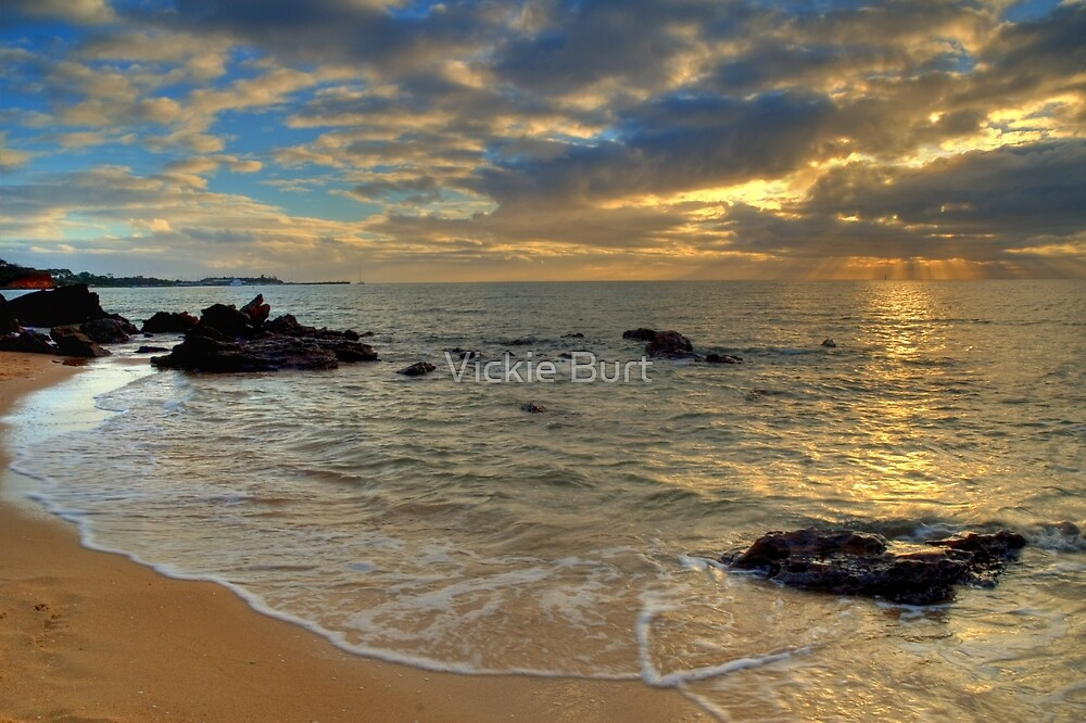 Last Rays of the Day by Vickie Burt