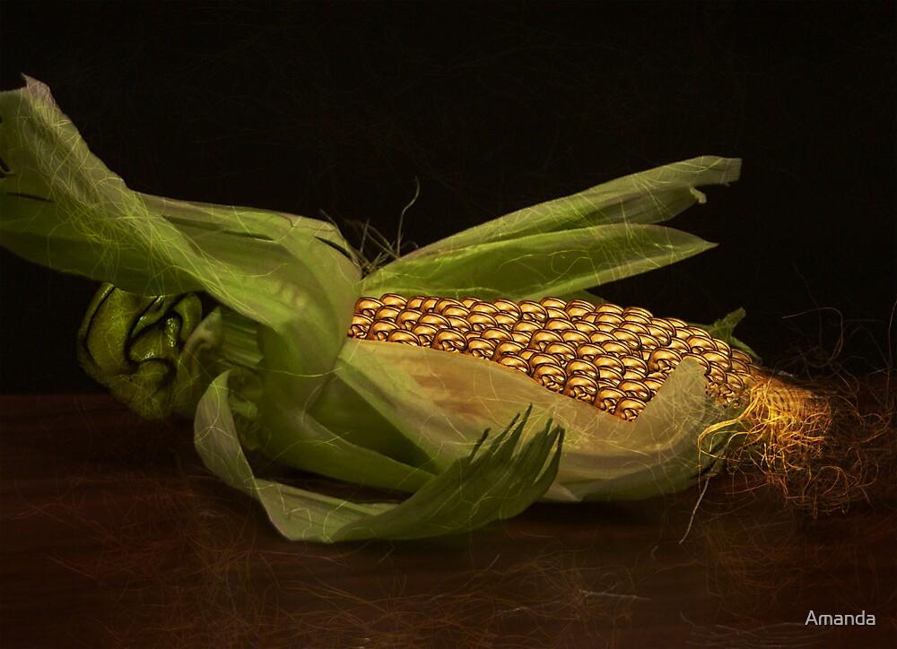 Ear on the Cob by Amanda J Slack-Smith