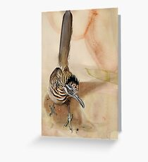 Graphic Greater Roadrunner Greeting Card