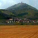 Alsace lands by annalisa bianchetti