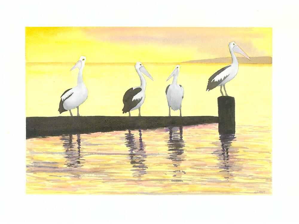 Pelicans on jetty by Jenny Opie