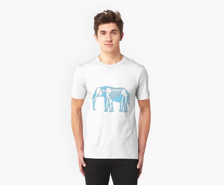 elephant skeleton by 2piu2design