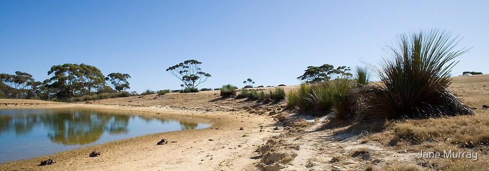 Kangaroo island dam by Jane Murray