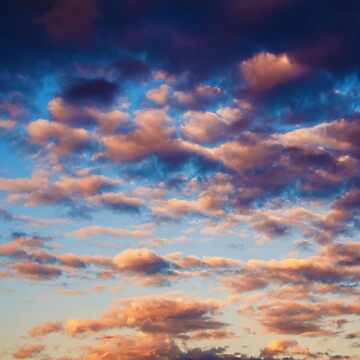 Cloud / Cloud by Xymota
