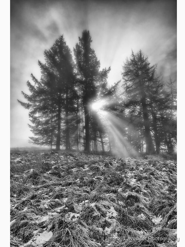 Scottish Sunrise by 242Digital