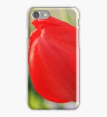 Red Tulip About to Open iPhone Case/Skin