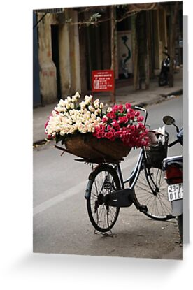 basket of roses : 1189 views by stickelsimages