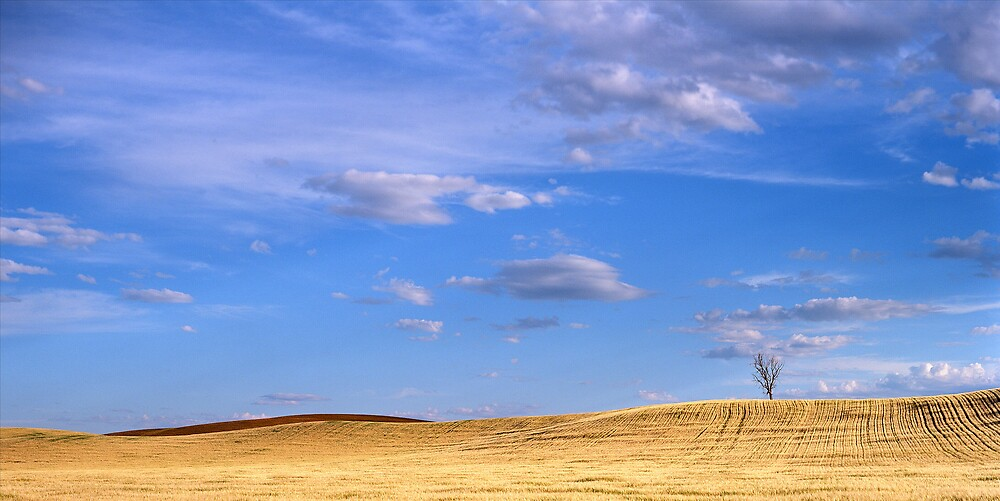Afternoon Glow, Vinegar Hills by mgimagery