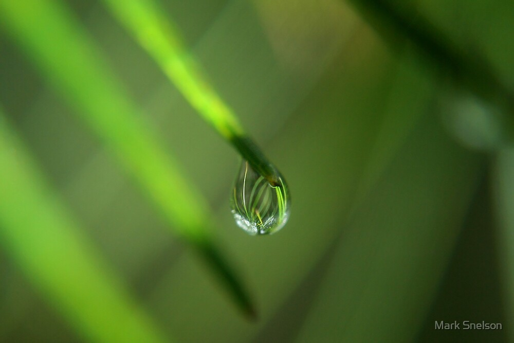 Droplet 1 by Mark Snelson