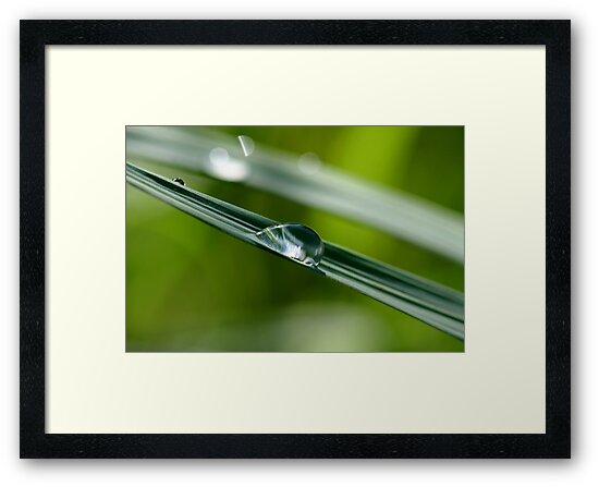 Droplet 3 by Mark Snelson