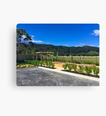 Garden Vegetable Patch Canvas Print