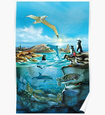Galapagos-Tiere Poster