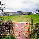 Gate to Castlerigg  by DebbyScott