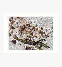 Beach detritis Art Print