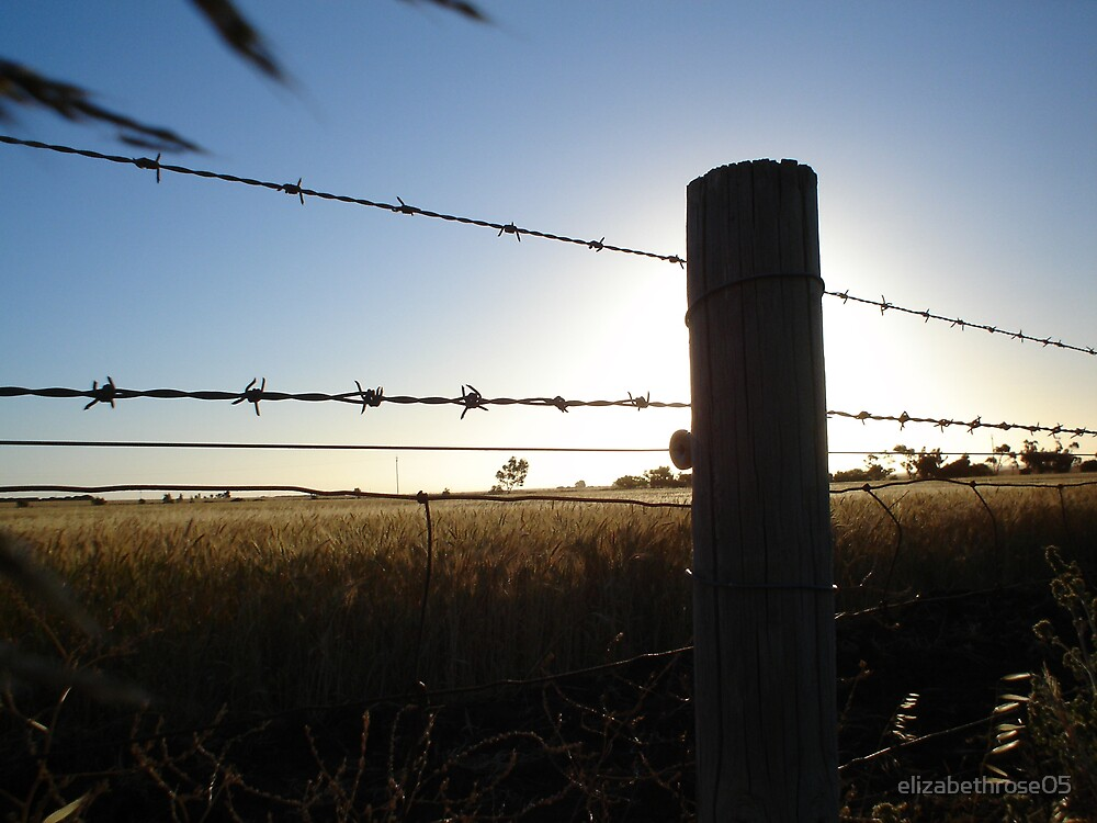 sunset and barbwire by elizabethrose05