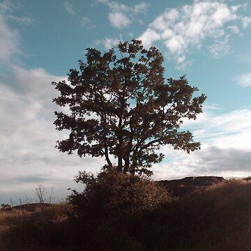 Tree by zhirobas
