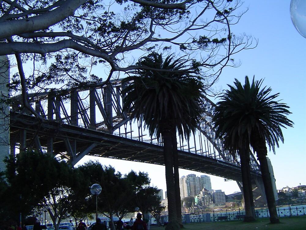 Sydney Harbour Bridge by Barry Ross