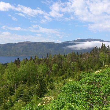 Newfoundland by zhirobas