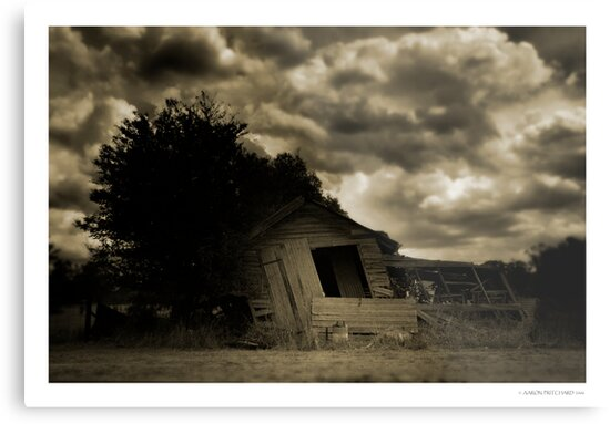 Old Shed by Aaron .