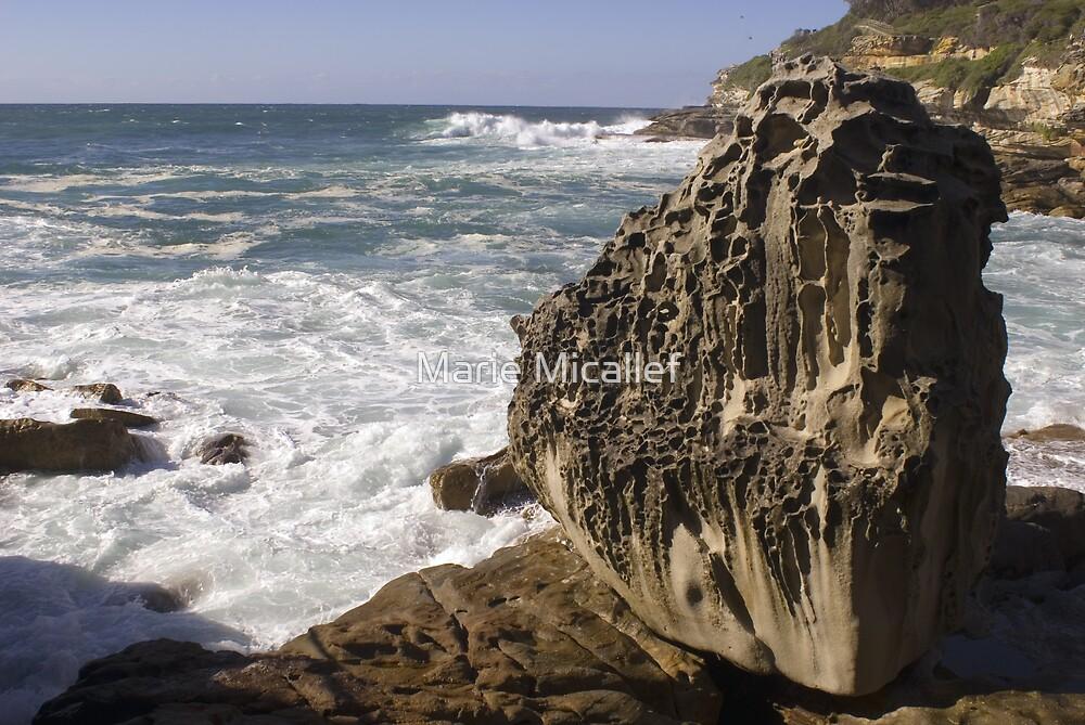 Rocky Coastline by Shutterbug