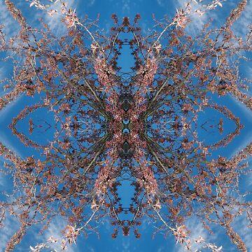 Blossom Burst #3 by speculi-bis
