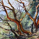 detail Arbutus on Mt. Parke  by TerrillWelch