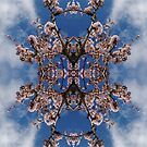 Blossom Burst #1 by John Hill-Daniel