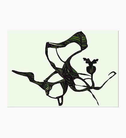 Green Dragon Fly Photographic Print