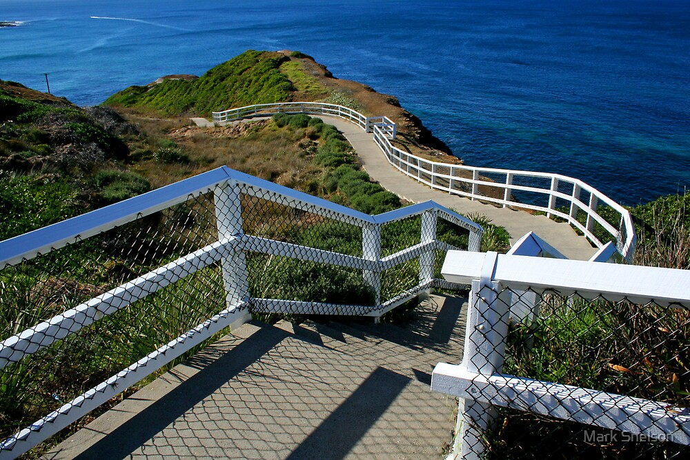Coastal Path 1 by Mark Snelson
