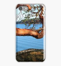Summer and an Arbutus tree iPhone Case/Skin