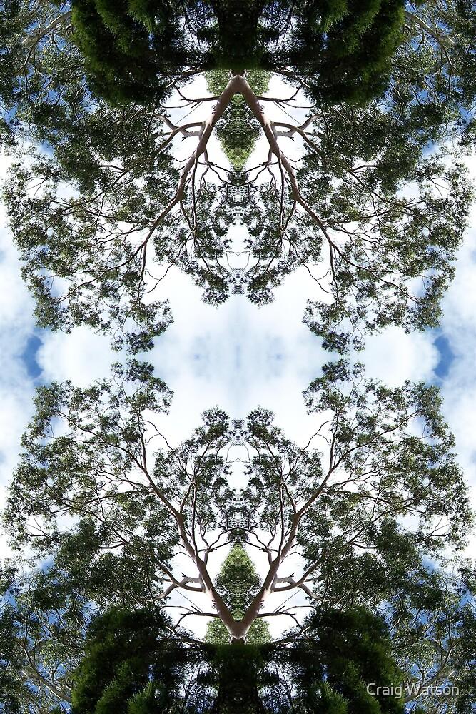 Botanic Kaleidoscope #8 by Craig Watson