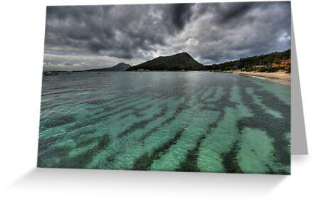Shoal Bay by Mark Snelson