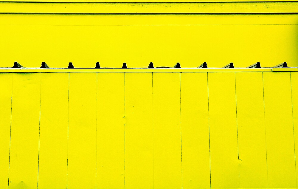 yellow by Janet Leadbeater