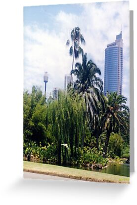 Botanical Gardens, Sydney (Card) by C J Lewis