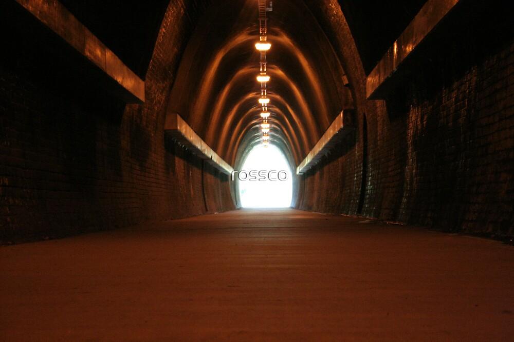 Fernleigh Tunnel by rossco