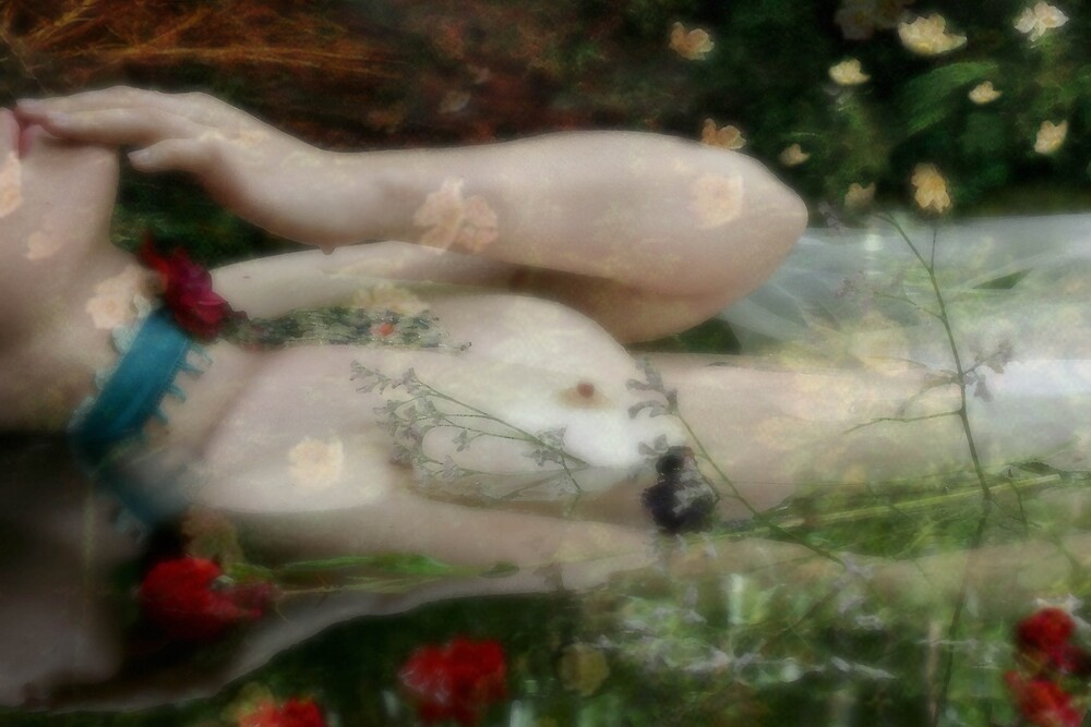 Ophelias Garden - Enchantment by nomes