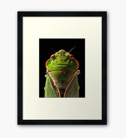 Greengrocer Framed Print