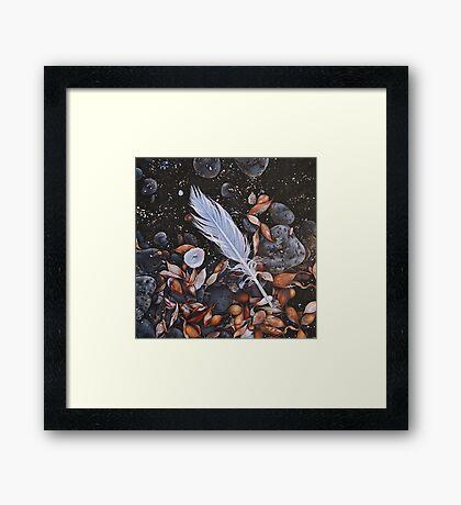 Beach floor, Flinders - detail Framed Print