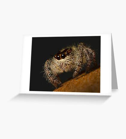 Woolly Predator Greeting Card