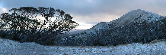 Mt Feathertop by footprint