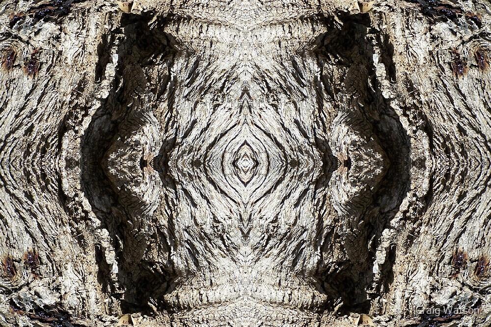 Gnarled Tree Trunk -  Kaleidoscope #2 by Craig Watson