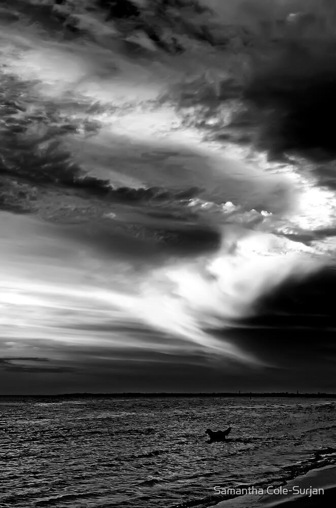 Carrum Sunset by Samantha Cole-Surjan