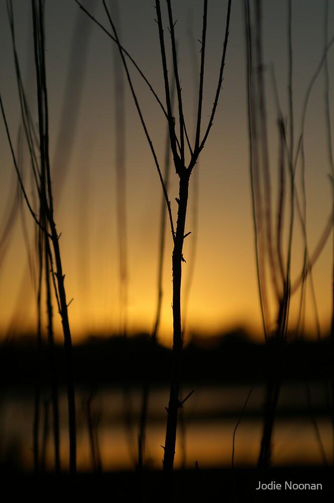 Quiet Times by Jodie Noonan