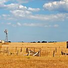 South Australian Drought by chriso