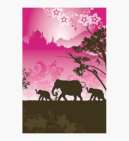 Indian elephants Photographic Print