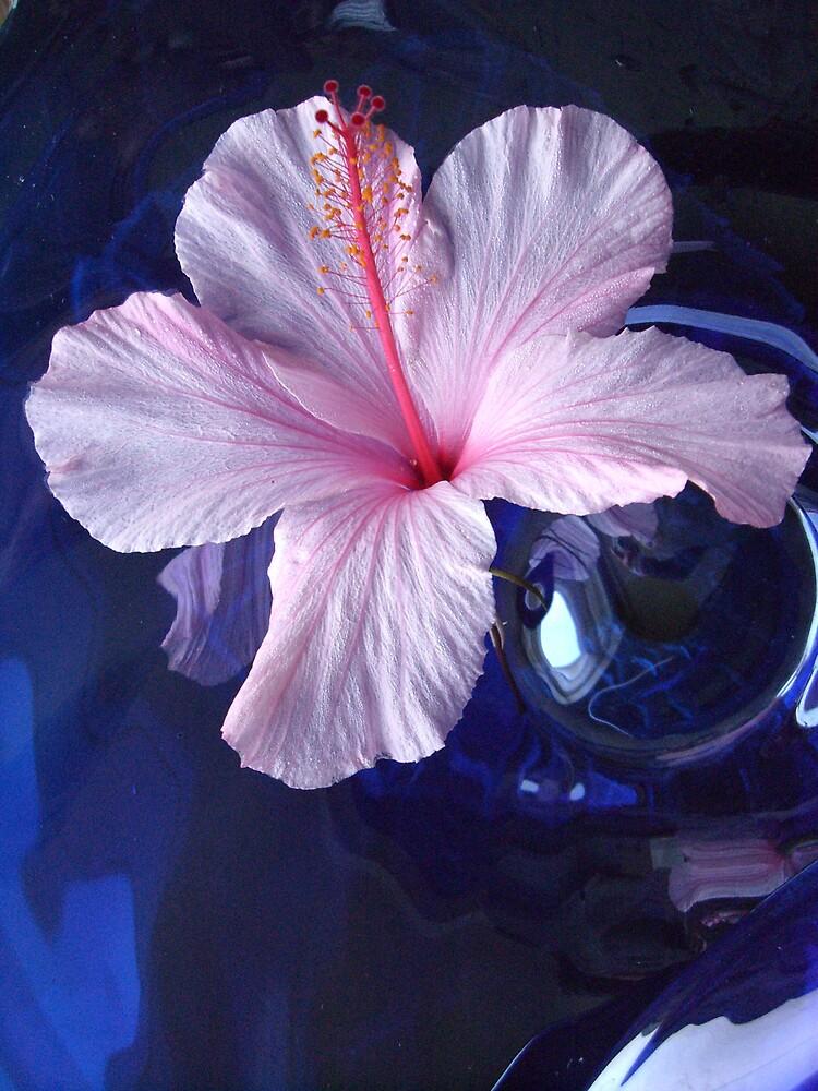 flower by buddy