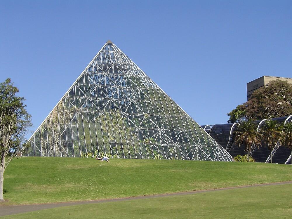 Pyramid by judy