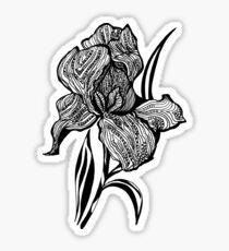 Single flower of Iris graphic illustartion Sticker